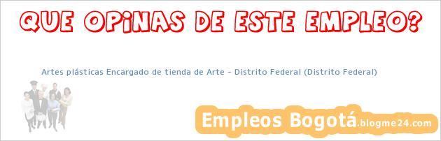 Artes plásticas Encargado de tienda de Arte – Distrito Federal (Distrito Federal)