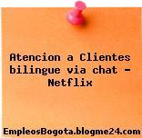 Atencion a Clientes bilingue via chat – Netflix