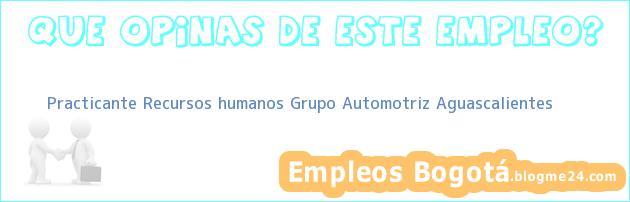 Practicante Recursos humanos Grupo Automotriz Aguascalientes
