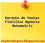 Gerente de Ventas Flotillas Agencia Automotriz