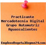 Practicante Mercadotecnia Digital Grupo Automotriz Aguascalientes