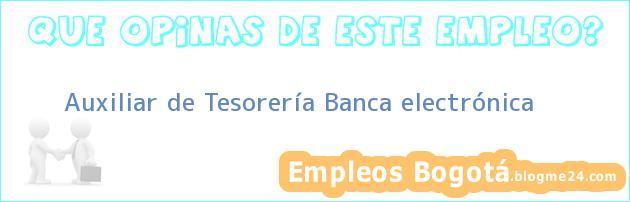 Auxiliar de Tesorería Banca electrónica