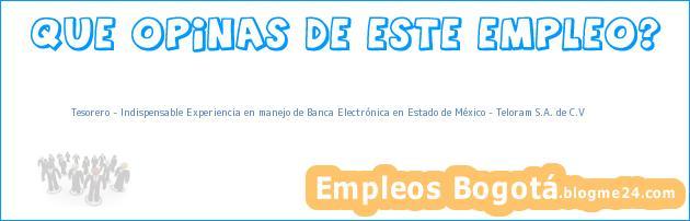 Tesorero – Indispensable Experiencia en manejo de Banca Electrónica en Estado de México – Teloram S.A. de C.V