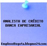 ANALISTA DE CRÉDITO BANCA EMPRESARIAL
