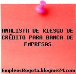 ANALISTA DE RIESGO DE CRÉDITO PARA BANCA DE EMPRESAS