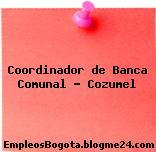 Coordinador De Banca Comunal Cozumel