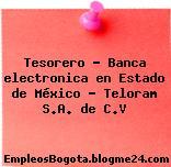 Tesorero – Banca electronica en Estado de México – Teloram S.A. de C.V