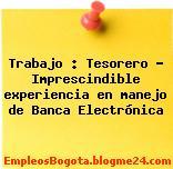 Trabajo : Tesorero – Imprescindible experiencia en manejo de Banca Electrónica