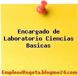 Encargado de Laboratorio Ciencias Basicas