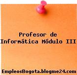Profesor de Informática Módulo III