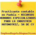 Practicante contable en Puebla – RECURSOS HUMANOS ESPECIALIZADOS PARA LA INDUSTRIA AUTOMOTRIZ, SA DE CV