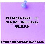 REPRESENTANTE DE VENTAS INDUSTRIA QUIMICA