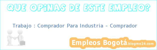 Trabajo : Comprador Para Industria – Comprador