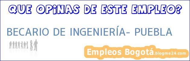 BECARIO DE INGENIERÍA- PUEBLA