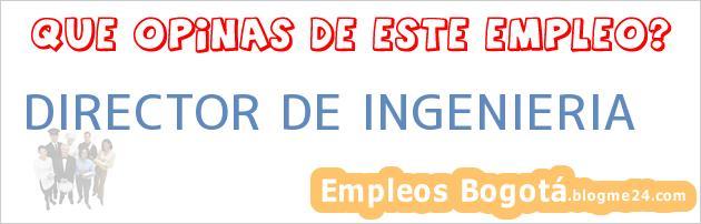 DIRECTOR DE INGENIERIA