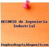 Becario de Ingeniería Industrial