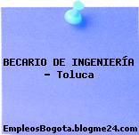 BECARIO DE INGENIERÍA – Toluca