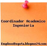 Coordinador Academico Ingenieria