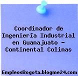 Coordinador de Ingeniería Industrial en Guanajuato – Continental Colinas