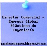 Director Comercial – Empresa Global Plásticos de Ingeniería