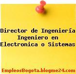 Director de Ingeniería Ingeniero en Electronica o Sistemas