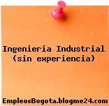 Ingenieria Industrial (sin experiencia)