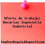 Oferta de trabajo: Becarias Ingenieria Industrial