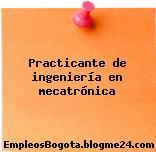 Practicante de ingeniería en mecatrónica