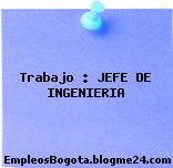 Trabajo : JEFE DE INGENIERIA