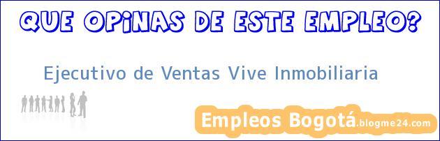 Ejecutivo de Ventas Vive Inmobiliaria