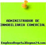 ADMINISTRADOR DE INMOBILIARIA COMERCIAL