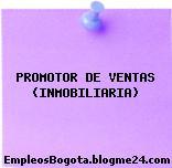PROMOTOR DE VENTAS (INMOBILIARIA)