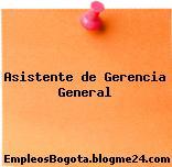 Asistente de Gerencia General