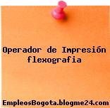 Operador de Impresión flexografia