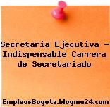 Secretaria Ejecutiva – Indispensable Carrera de Secretariado