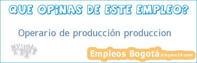 Operario De Producción – Producción