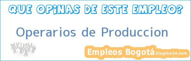 Operarios de Produccion