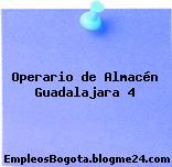 Operario de Almacén Guadalajara 4