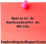 Operario de Mantenimiento en Mérida