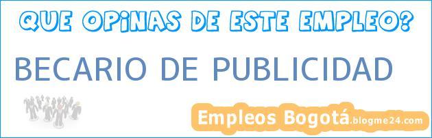 BECARIO DE PUBLICIDAD