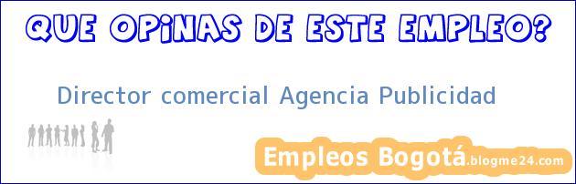 Director comercial Agencia Publicidad
