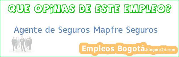 Agente de Seguros Mapfre Seguros