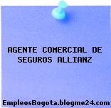 AGENTE COMERCIAL DE SEGUROS ALLIANZ