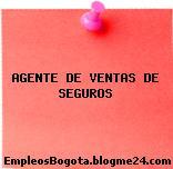 AGENTE DE VENTAS DE SEGUROS
