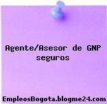 Agente/Asesor de GNP seguros