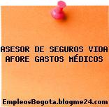 ASESOR DE SEGUROS VIDA AFORE GASTOS MÉDICOS