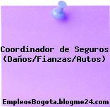 Coordinador de Seguros (Daños/Fianzas/Autos)