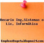 Becario Ing.Sistemas o Lic. Informática