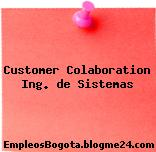Customer Colaboration Ing. de Sistemas