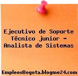 Ejecutivo de Soporte Técnico junior – Analista de Sistemas